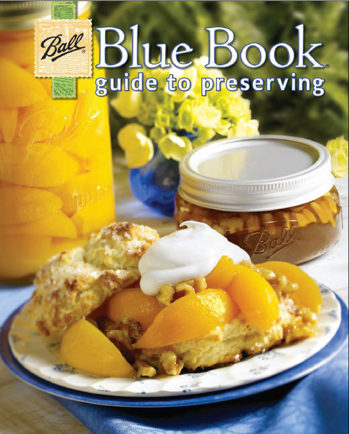 Blue Book, Guide to Preserving